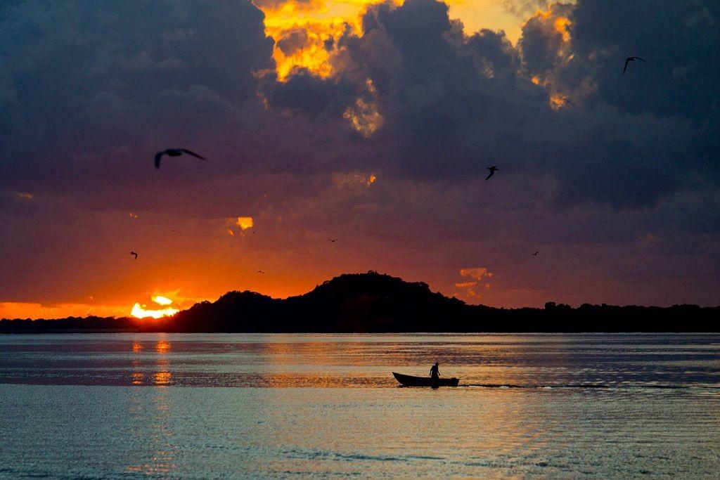 Sunrise at Ilha do Cardoso  © Leandronegro/WikiCommons