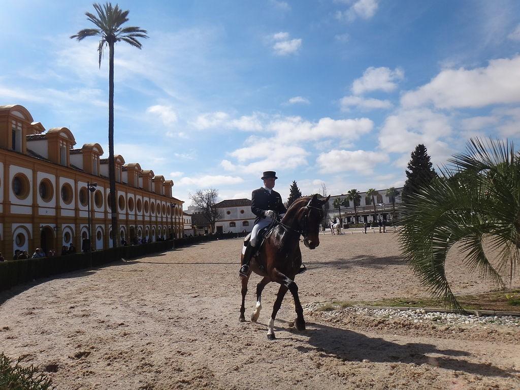 Real Escuela Andaluza Arte Ecuestre, Jerez | ©El Pantera / Wikimedia Commons
