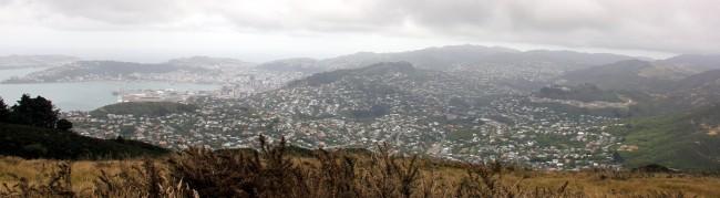 View from Mount Kaukau, Wellington   © Gabriel Pollard