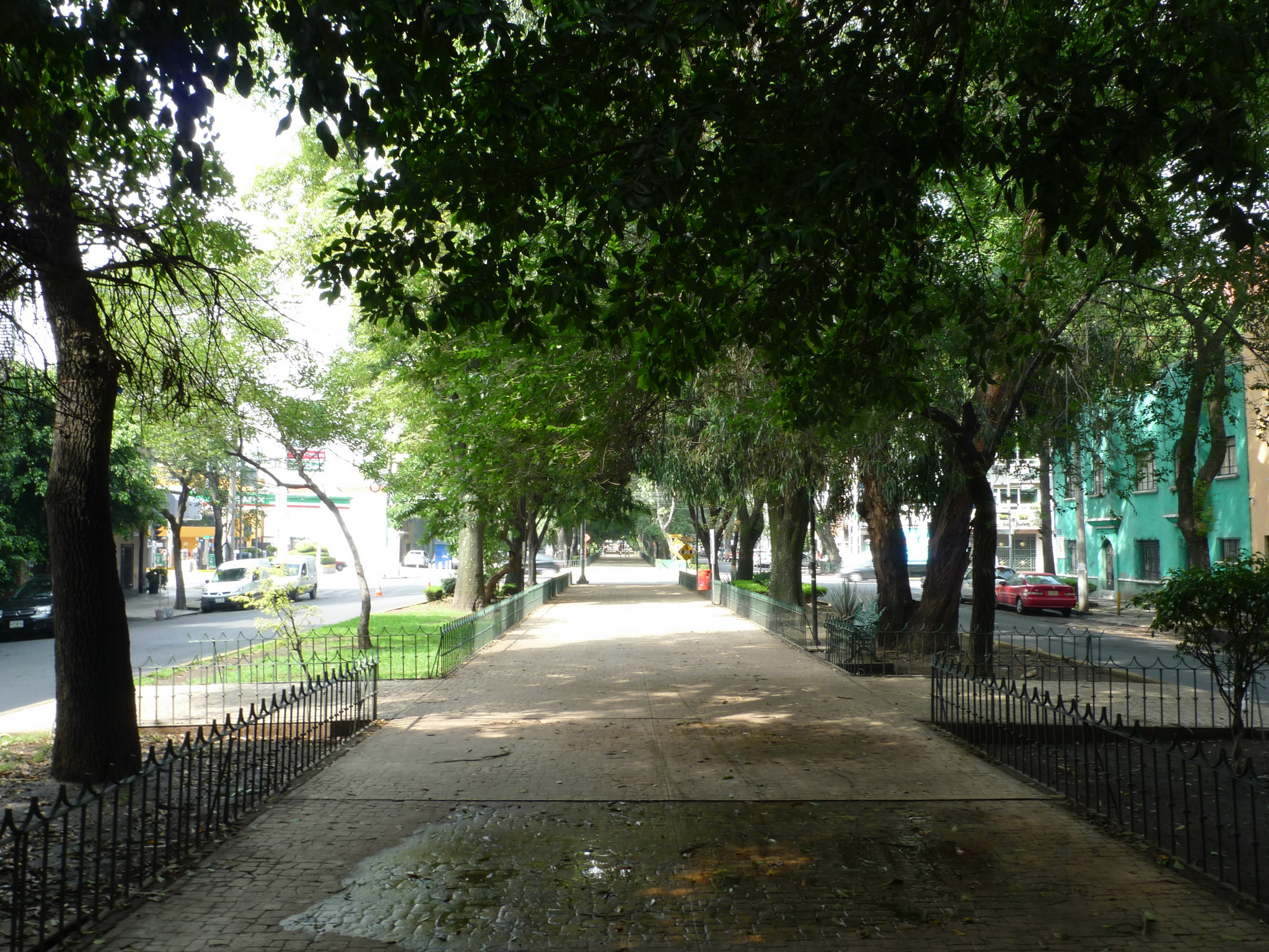 Leafy street, Condesa | © Mark Hogan/Flickr