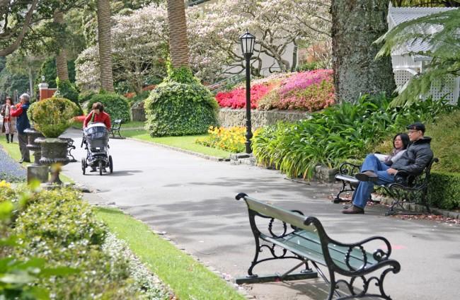 Wellington Botanic Garden | © Sydney Struwlg/Flickr
