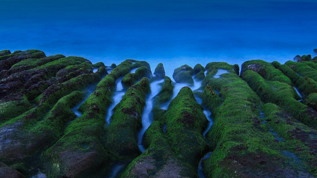 Stone Trench of Laomei Coast | © FancyFantacy / Flickr
