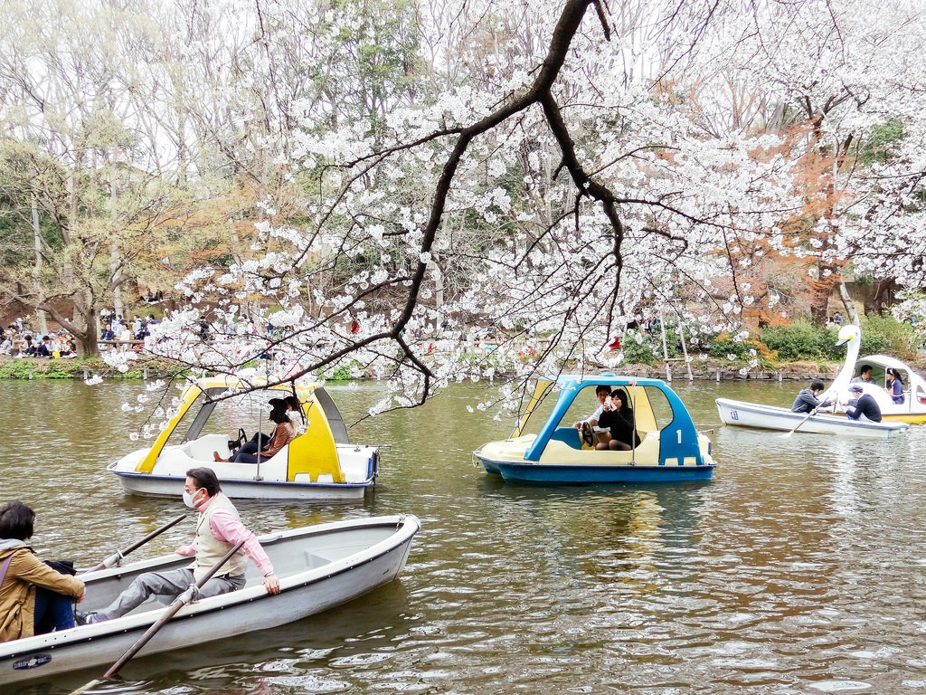 Inokashira Park | © Dick Thomas Johnson/Flickr