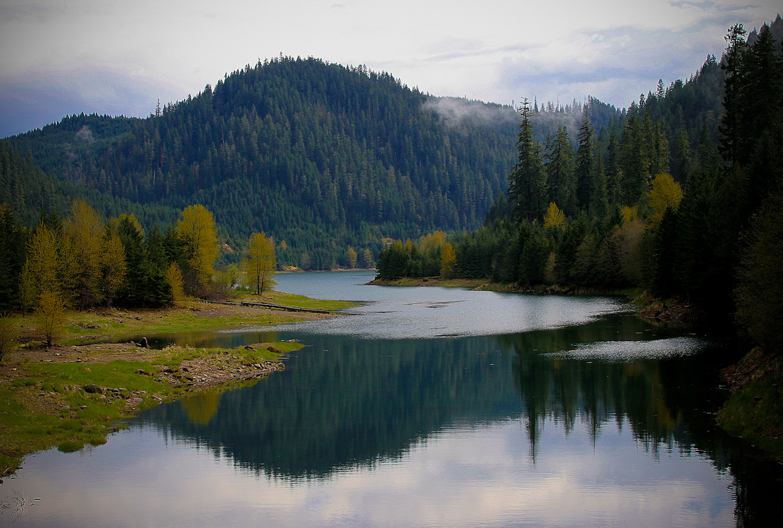 Blue River Reservoir-Willamette | © Forest Service/Flickr