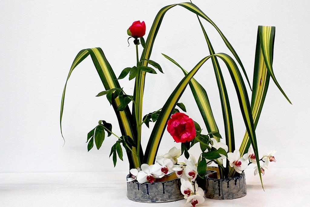 Ikebana   © Manuel/Flickr