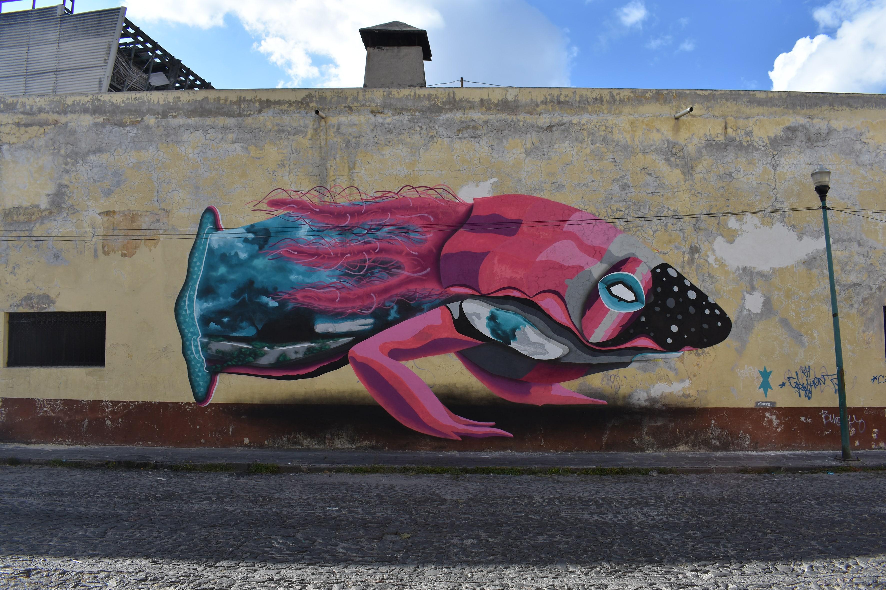 Axolotl D, Puebla © Mocre