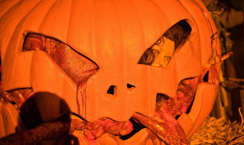 Halloween Horror Nights 2008 | Sean O'Shaughnessy/Flickr