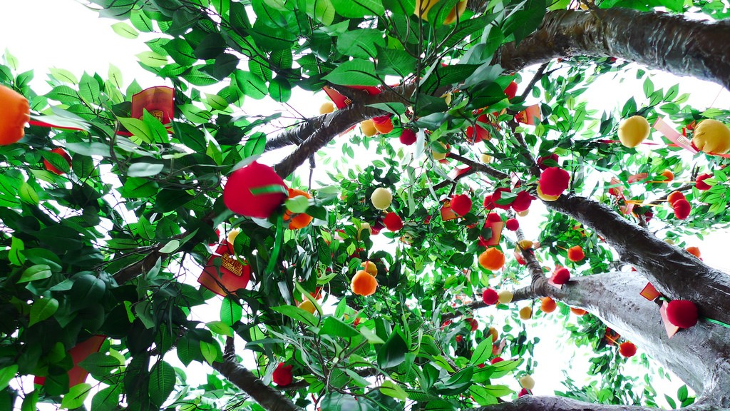 Lam Tsuen Wishing Tree | © Marvin Lee/ Flickr