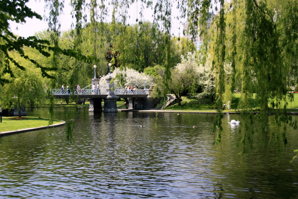 Boston Public Garden | © Bill Ilot / Flickr