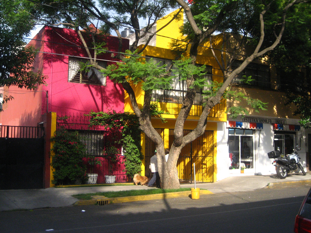 Vibrant houses, Coyoacán | © megananne/Flickr