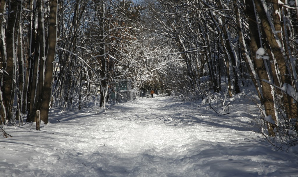 Take a snow walk on the Minuteman Bikeway | © Doug Searls/Flickr