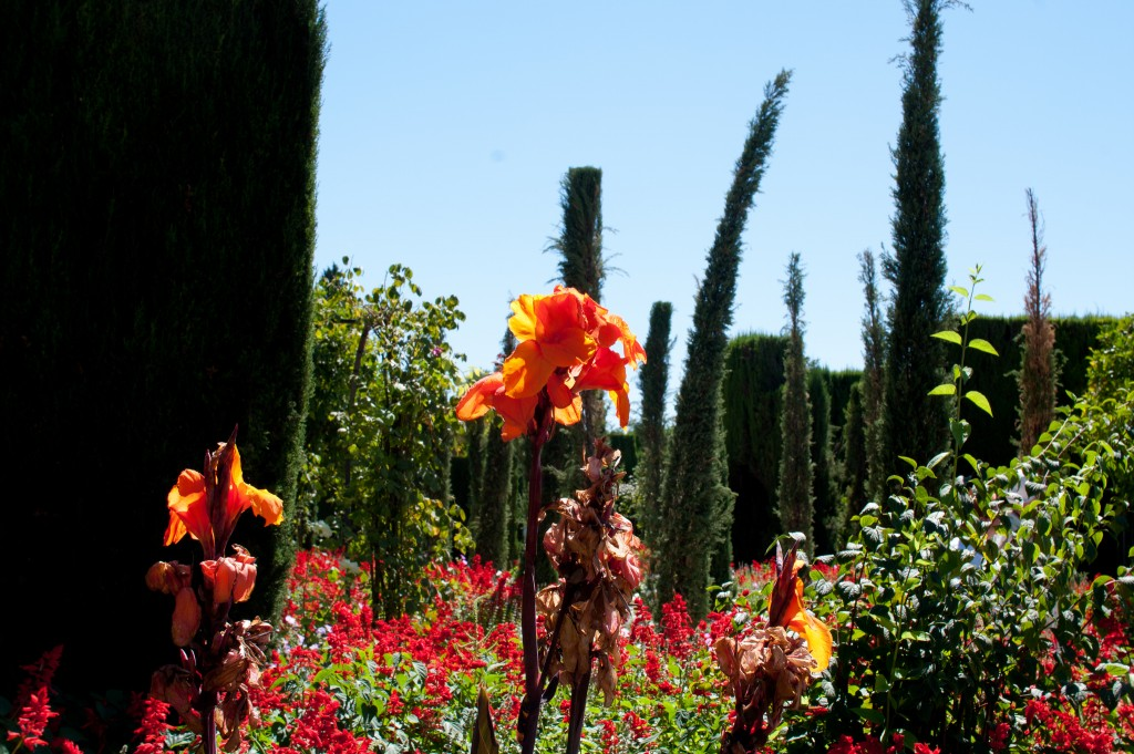 Granada is home to many romantic gardens; SnippyHollow, flickr