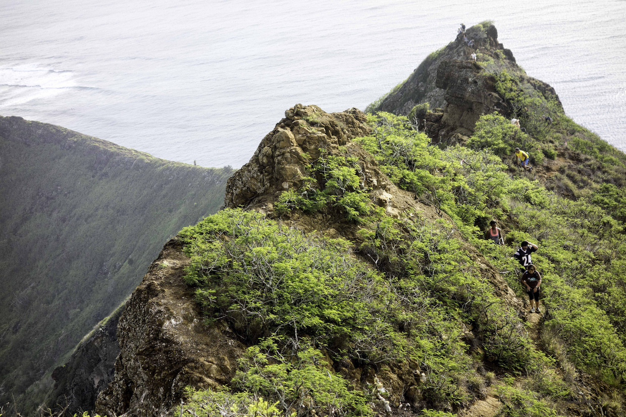 Koko Head Crater Trail | © Leonard S Jacobs/Flickr