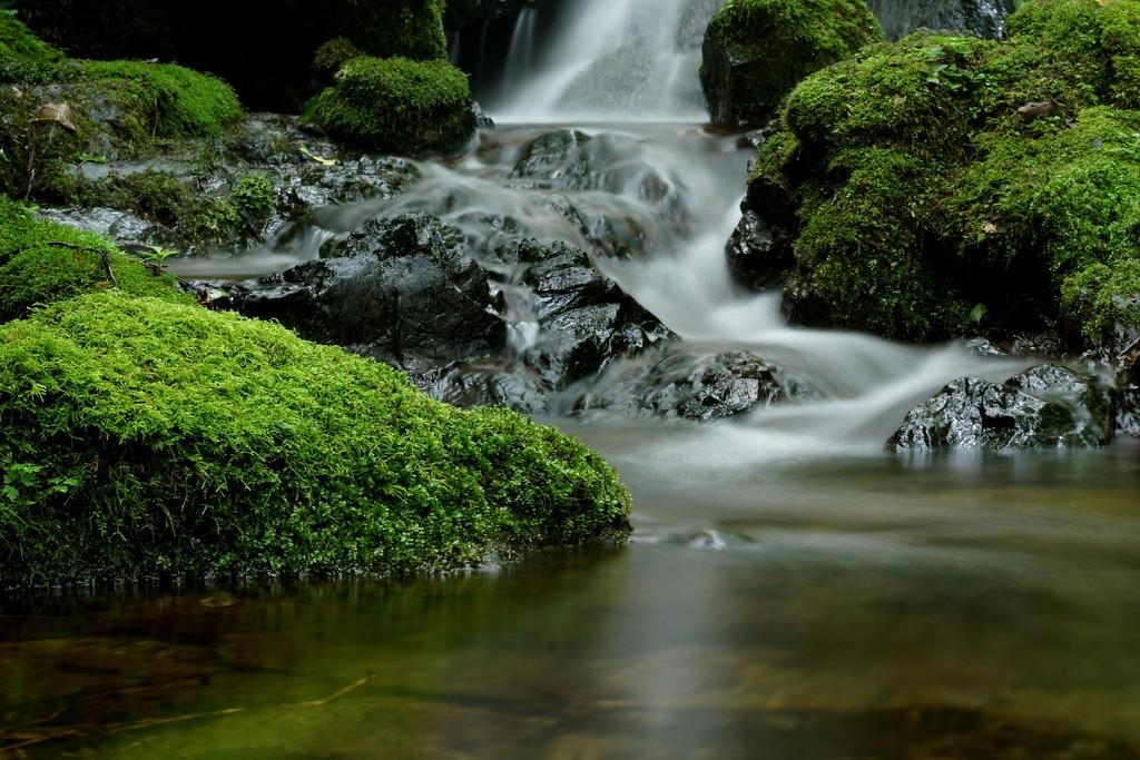 Mt. Mitake | © Takashi .M/Flickr