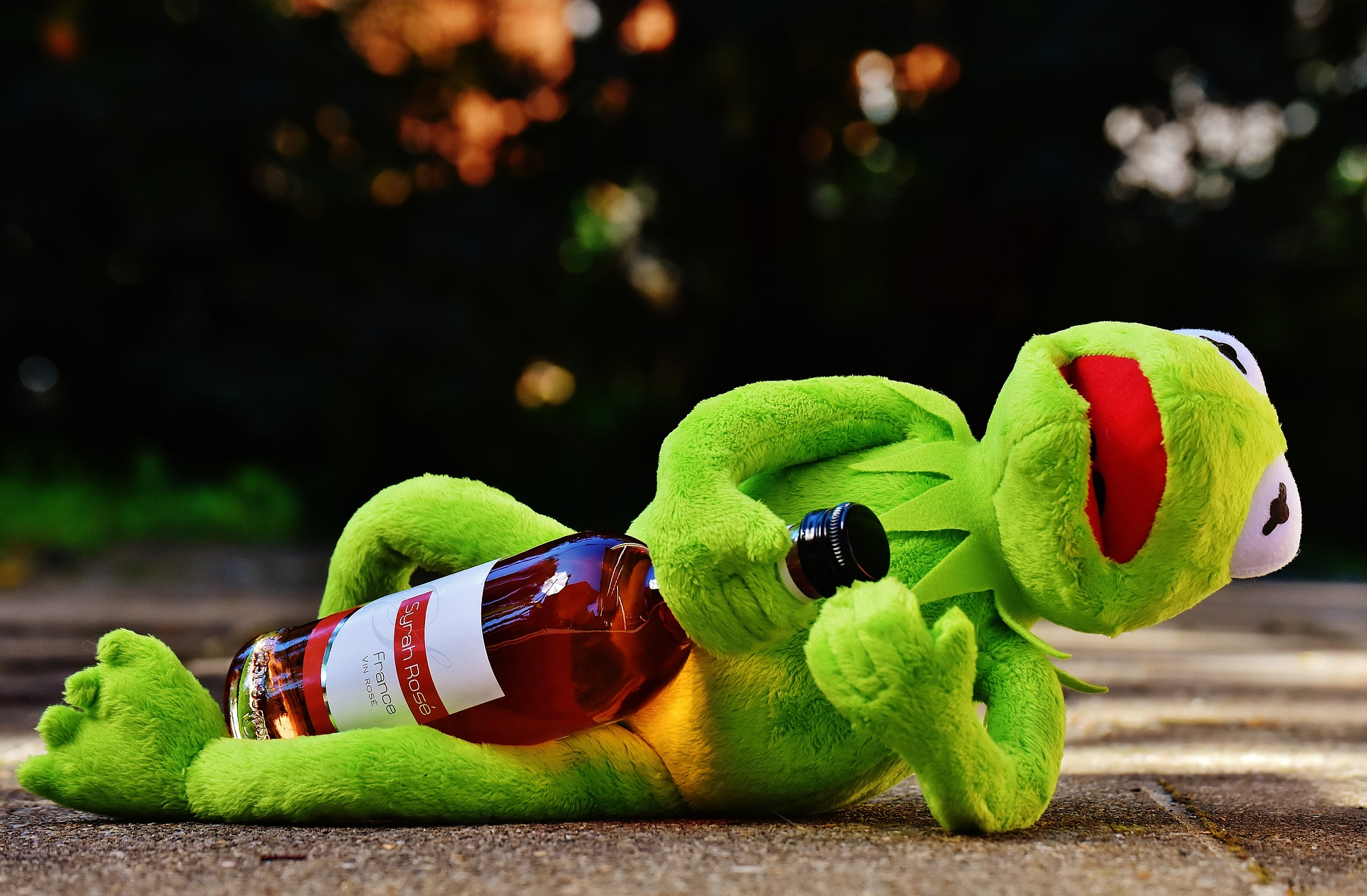10 Customs Only the French Can UnderstandKermit Drinking Wine