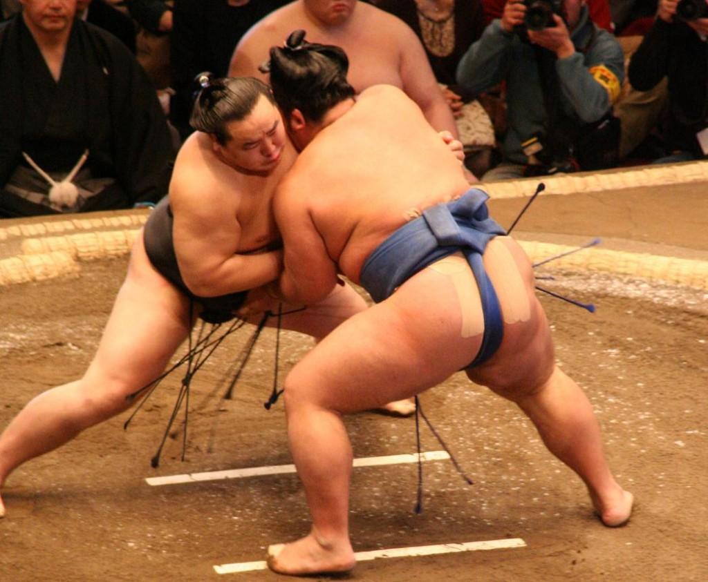 Sumo | © Eckhard Pecher/WikiCommons