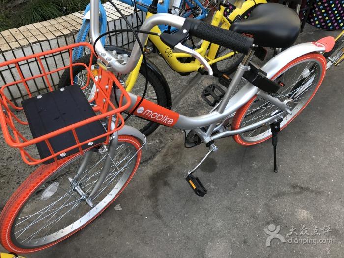 Bike Sharing | ©詹雯/Dianping