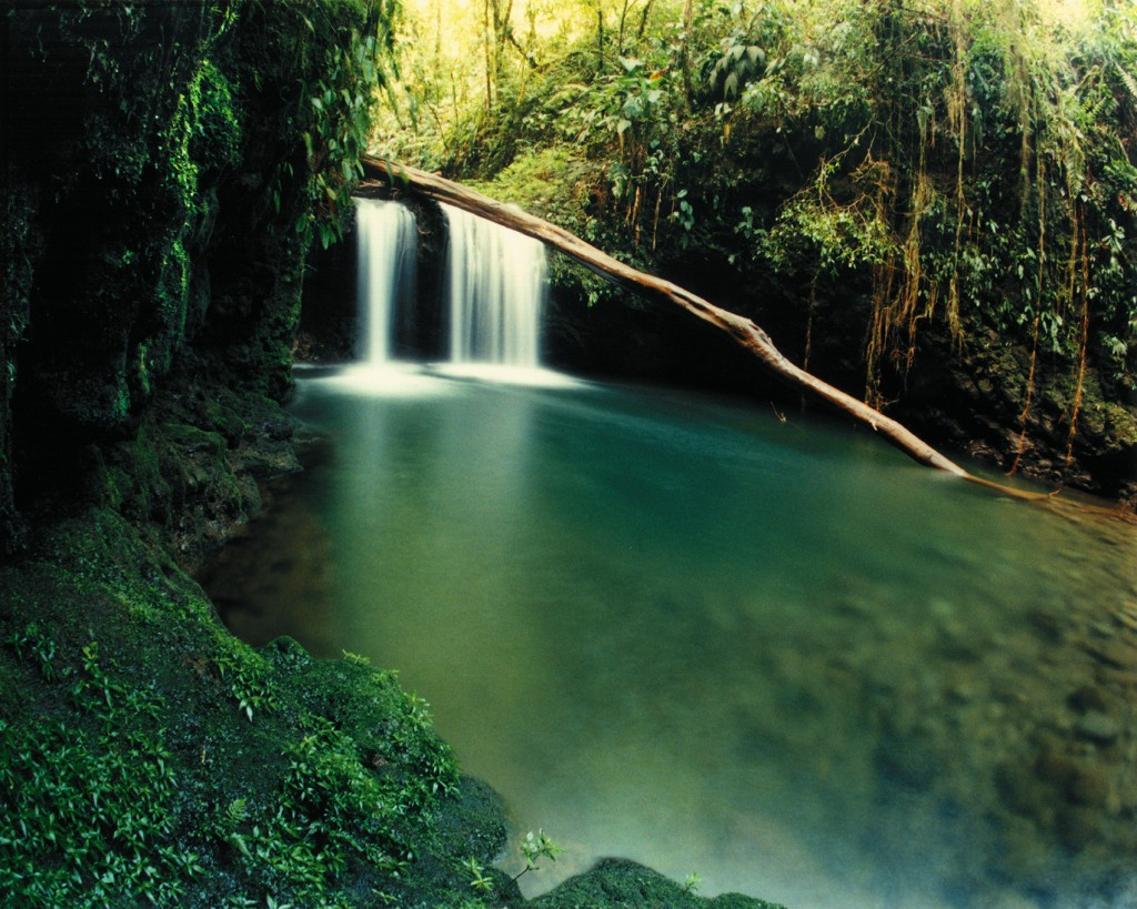 Braulio Carilla National Park/SINAC/Tico Times
