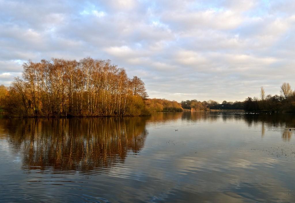 Chorlton Waterpark | © Staceycav/Flickr