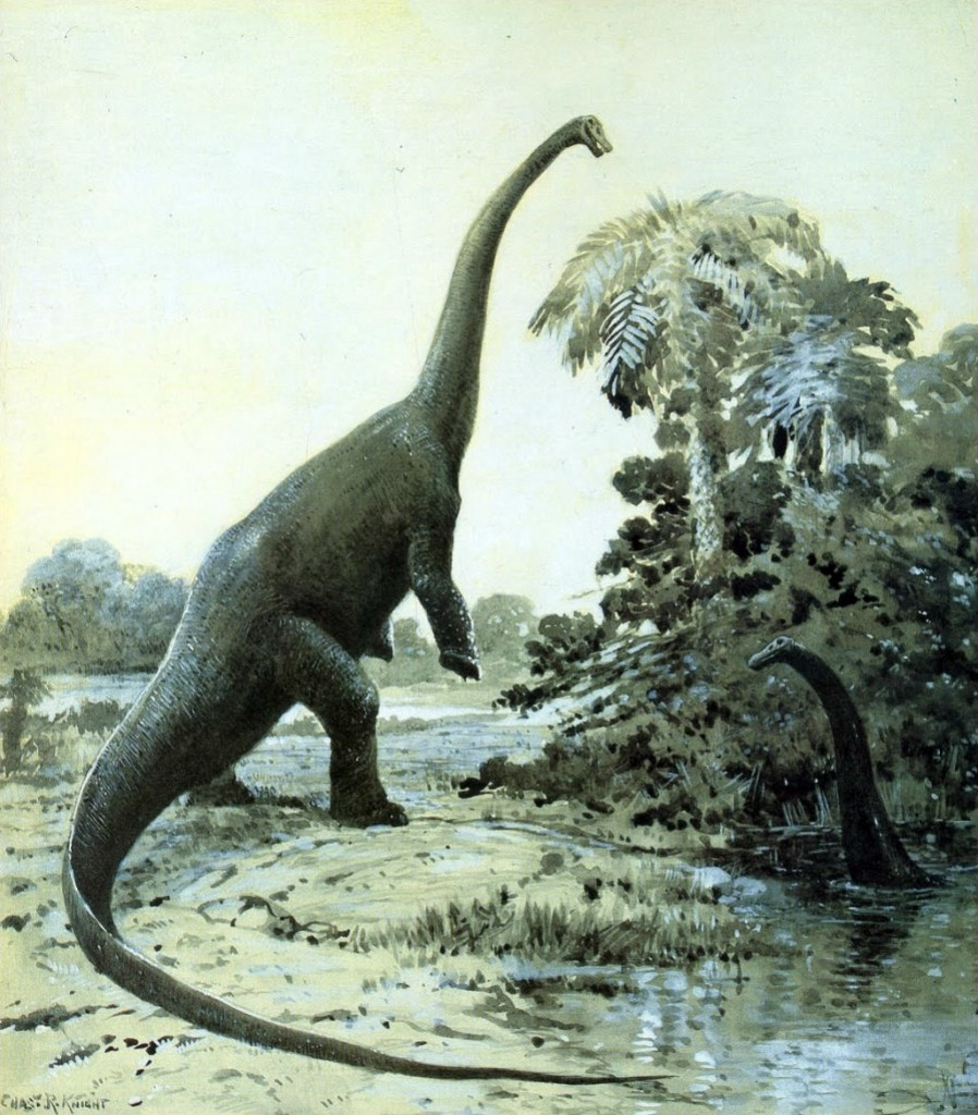 Diplodocus Rearing In A Painting By Charles Knight (Factually Inaccurate) | © WikiCommons