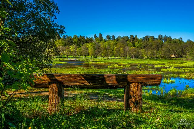 Bench at Isblandskärret, Djurgården | ©Tommie Hansen/Flickr
