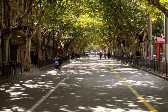 French Concession Street | ©Andrew K. Smith/Flickr