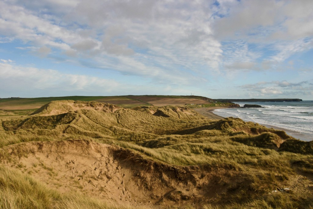 Freshwater West sand dunes|©Will/Flickr