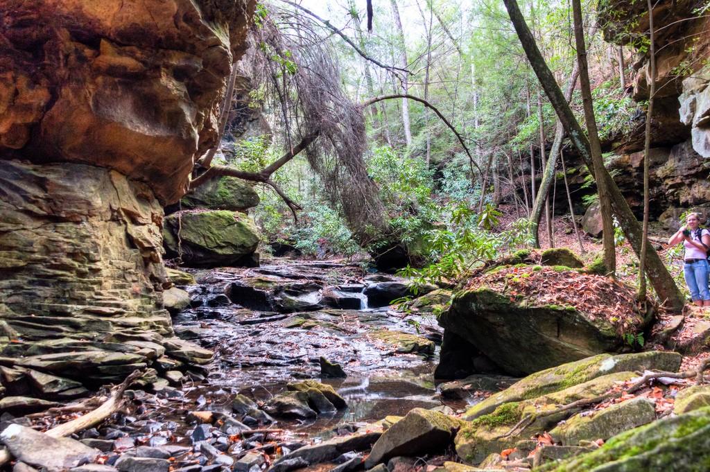 Honey Creek / (c) Michael Hicks / Flickr