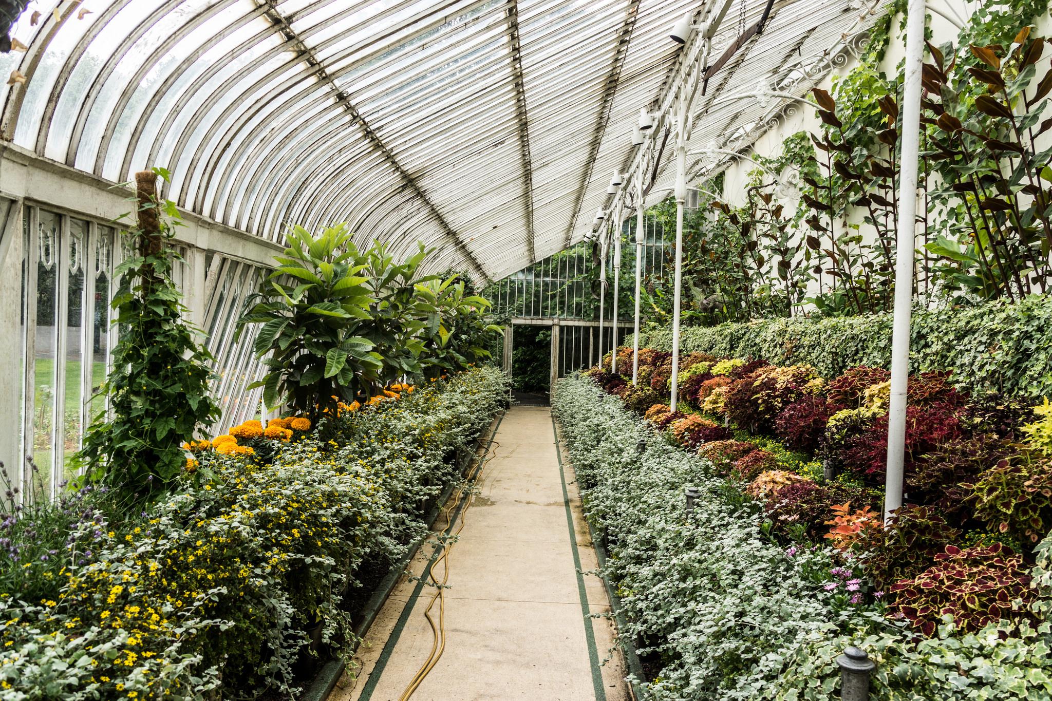 Botanic Gardens Belfast |© William Murphy / Flickr