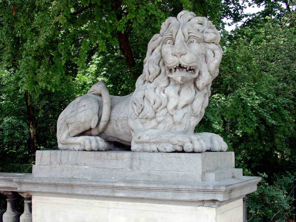 Scared lion | public domain / Wikimedia Commons