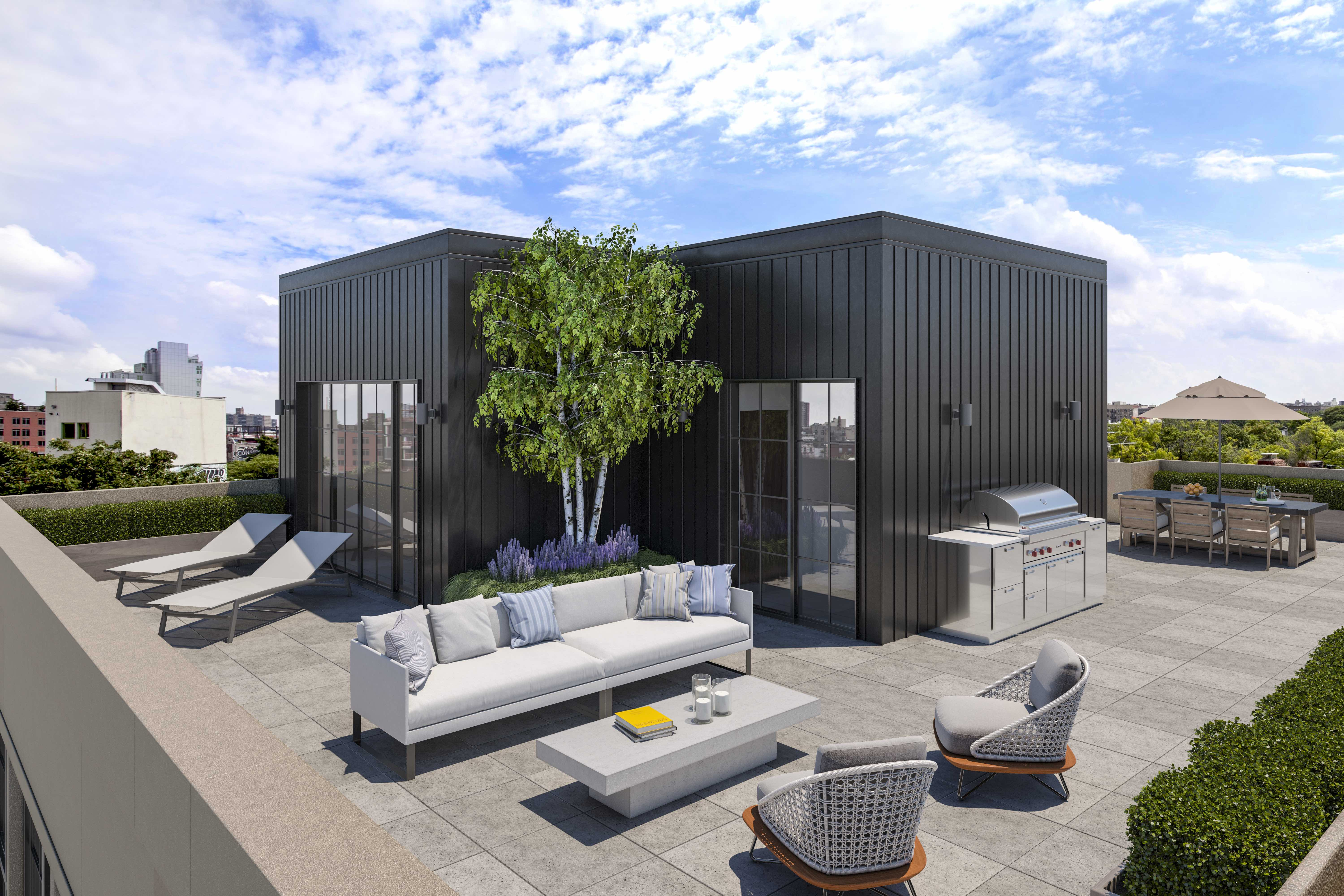Williamsburg rooftop, © Douglas Elliman, Courtesy of The Peters O'Brien Team