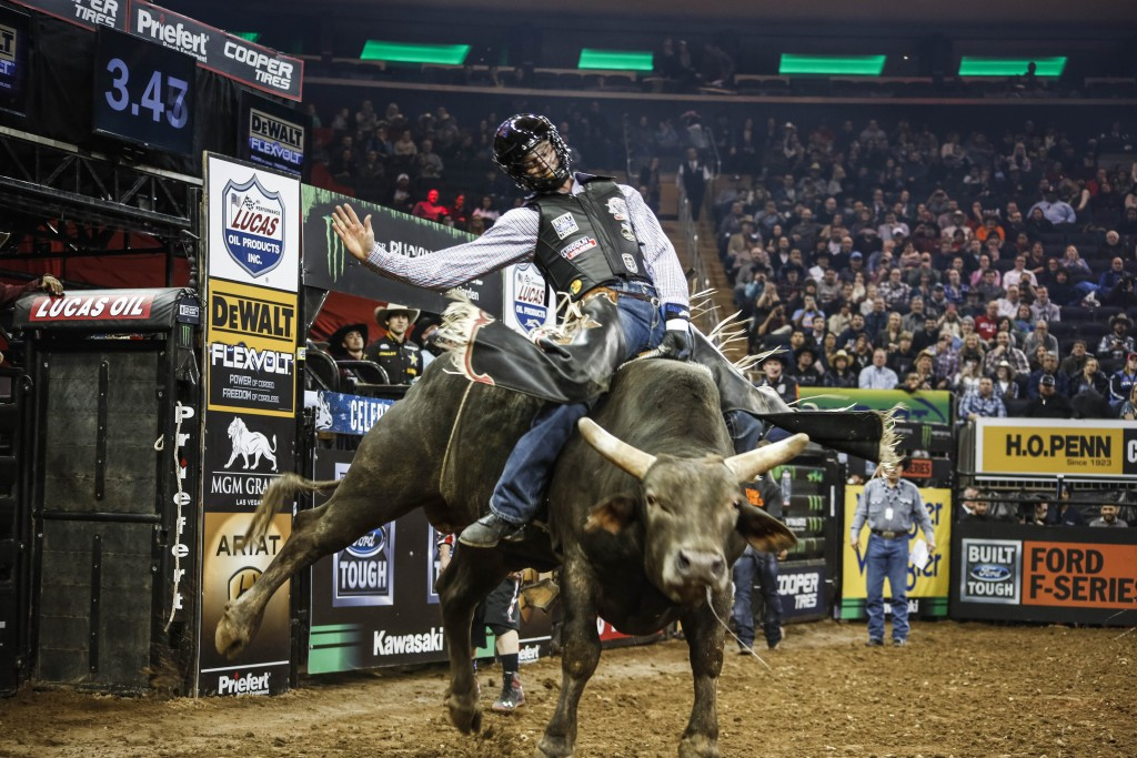Professional Bull Riding Is Becoming A Global Phenomenon