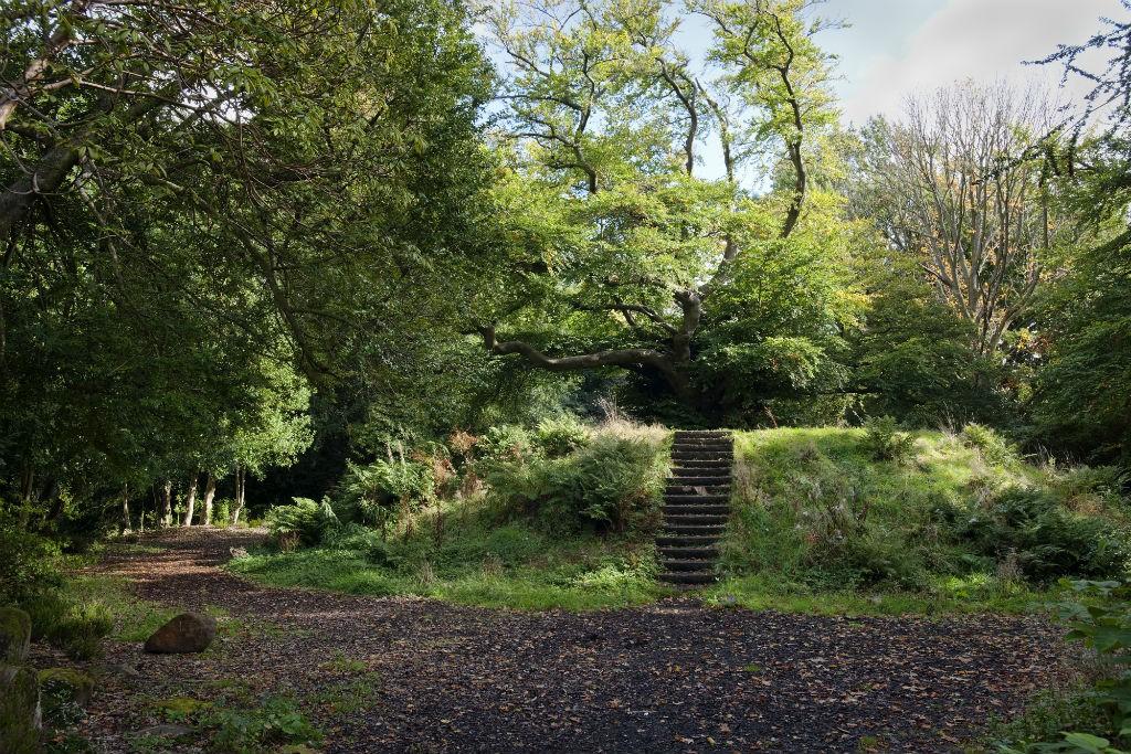 Pollok Park | Courtesy Of Glasgow Life