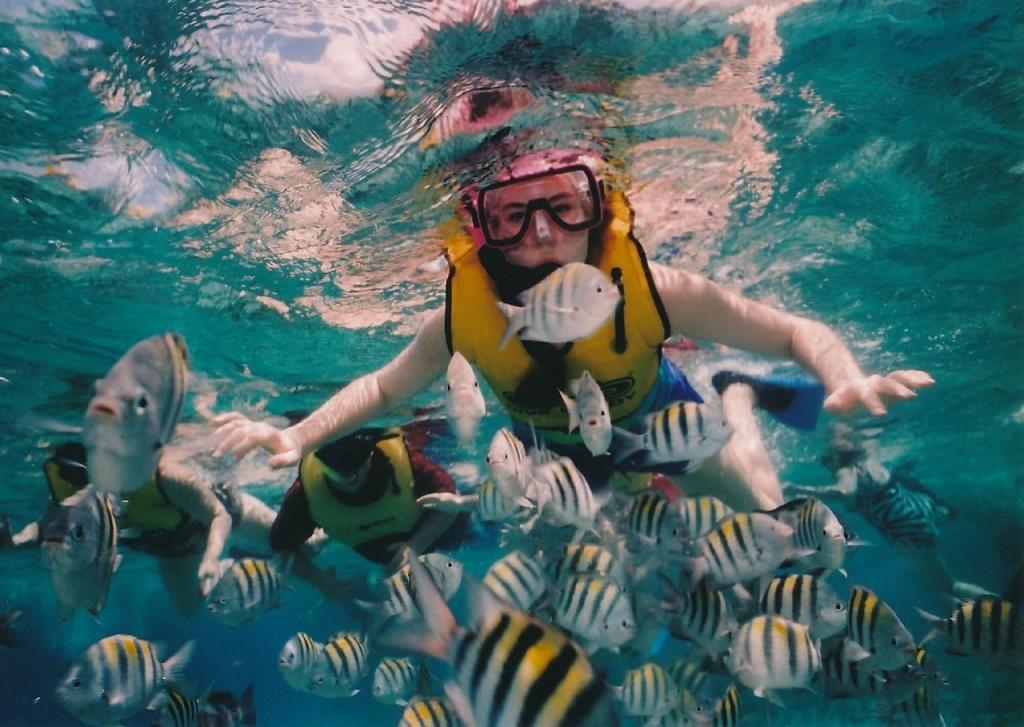 Reef Snorkeling | © Skeeze/Pixabay