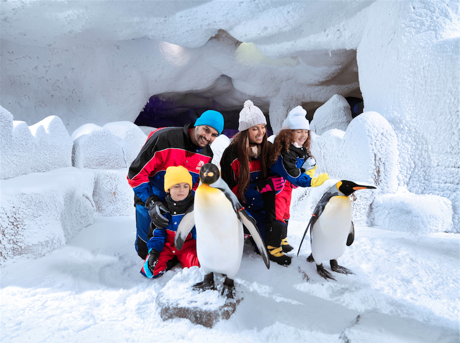 The Penguin Experience | Courtesy of Majid Al Futtaim Leisure and Entertainment LLC