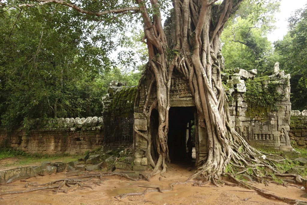 Ta Som is a quieter version of Ta Prohm | © Thousand Wonders