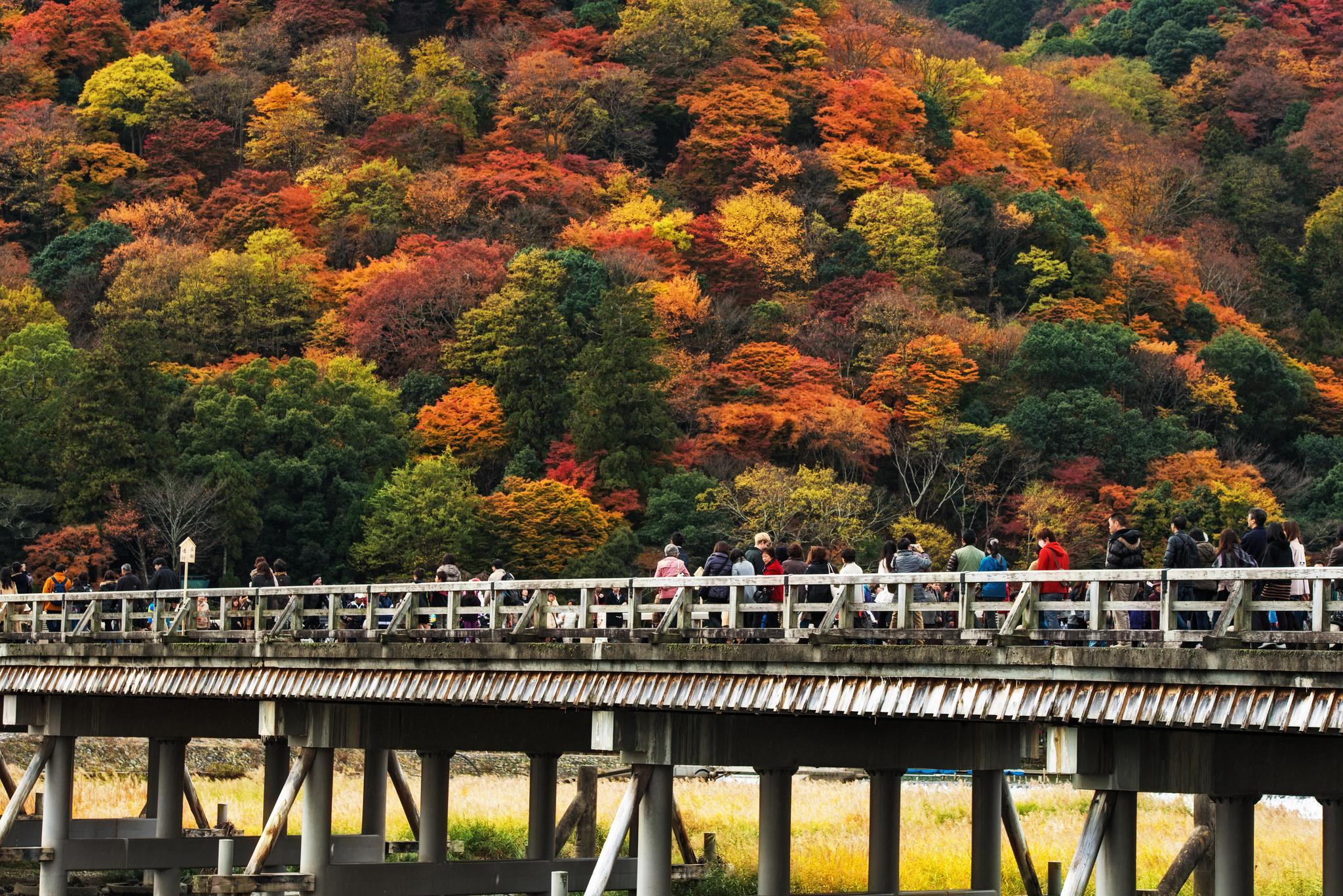 of japan bridge - photo #48
