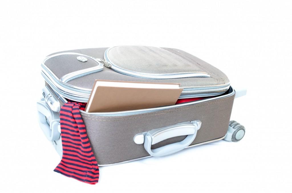 Travel Suitcase / ©George Hodan / PublicDomainPictures.net