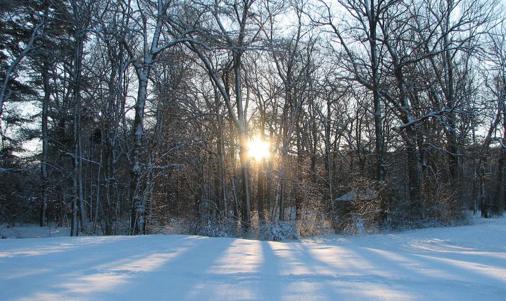 Experience the snowy trails of Weston Ski Track | © Elizabeth Lloyd / Flickr