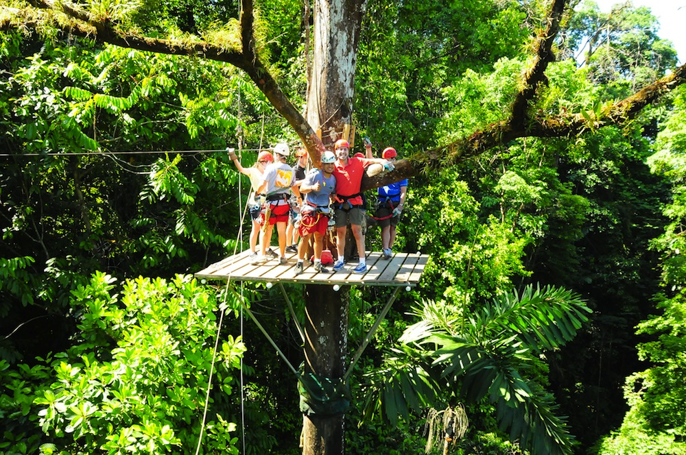 Zip line through the rainforest/David Berkowitz/Flickr