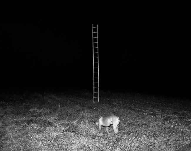 Mystery in Beira-Alta region of Portugal | © Tito Mouraz