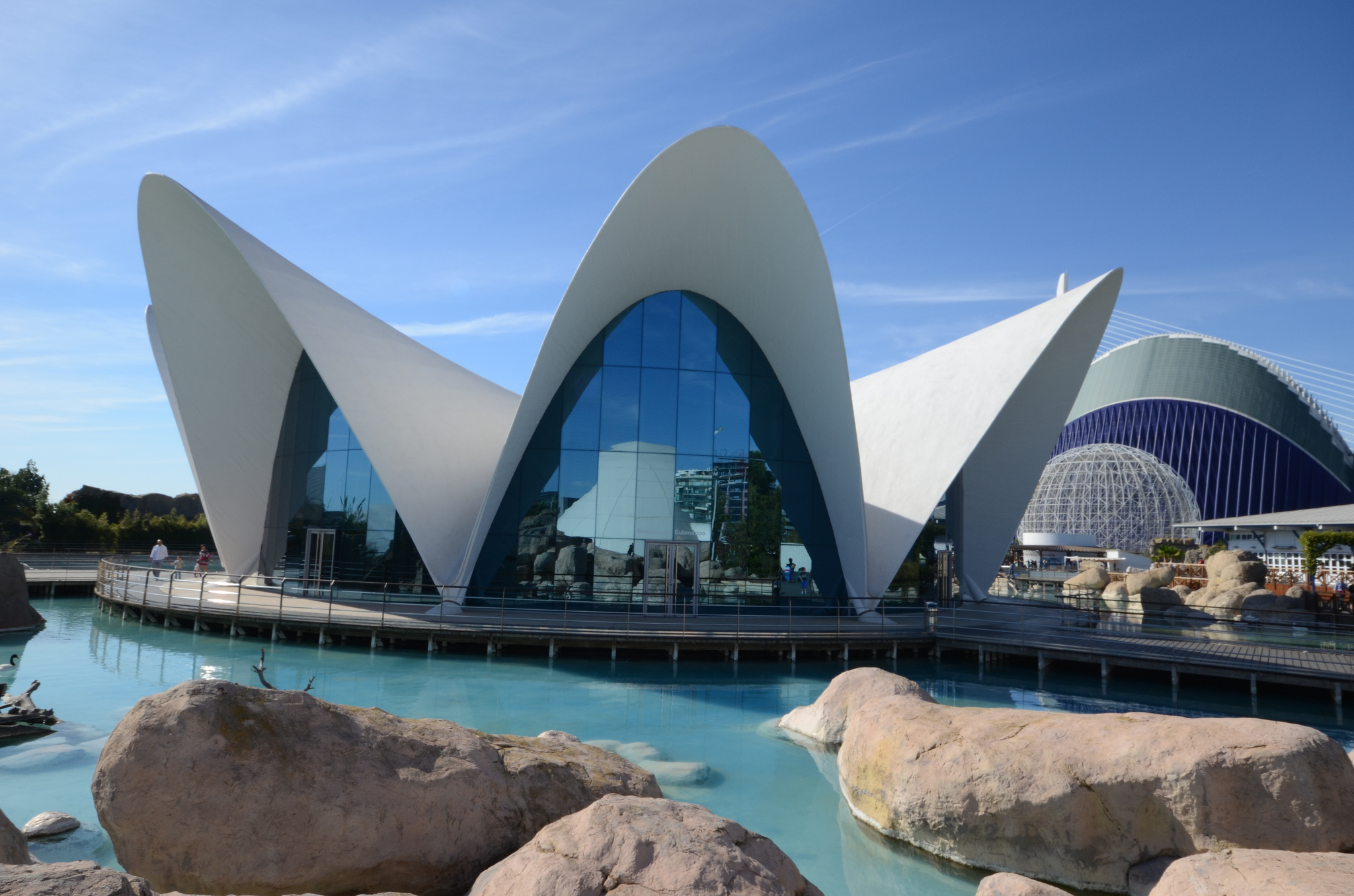 A Brief Introduction To The City Of Arts And Sciences