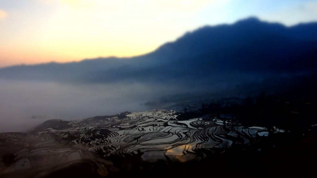 Yuanyang Hani Rice Terraces at Sunrise| © Chiu Ho-yang/Flickr