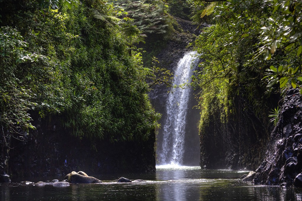 Taveuni waterfall, Fiji | © Björn Groß / Flickr