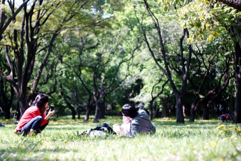 A sunny day in Koganei | © Takashi .M / Flickr