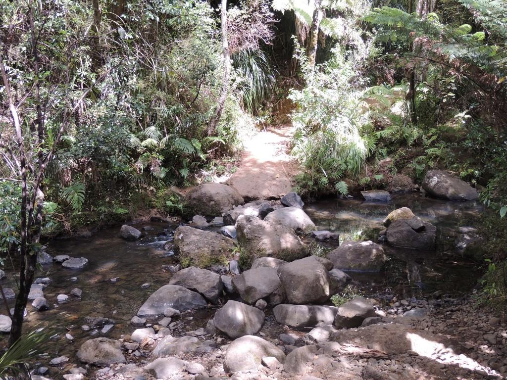 Stepping stones - Kitekite Track, Piha | © Jennifer Whiting/Flickr