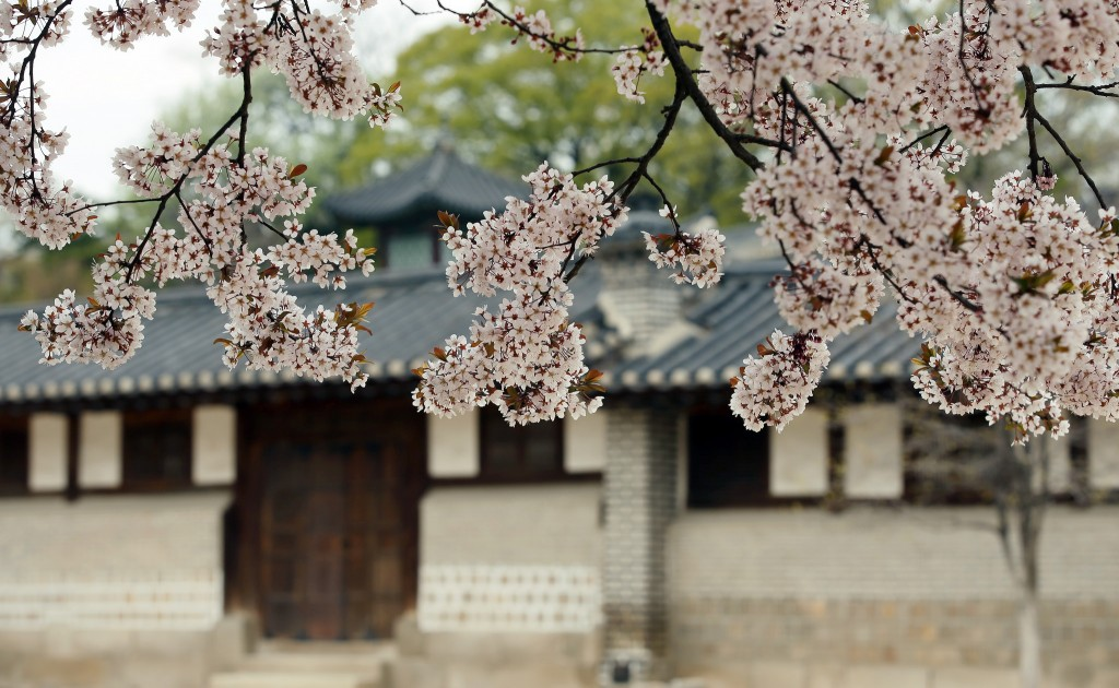 Spring at Changdeok Palace, Seoul | © KoreaNet / Flickr