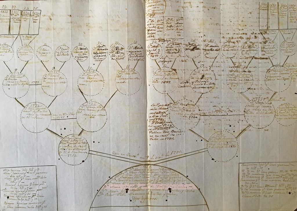 Fuchs studies old documents like this family tree belonging to Doña Natividad Martínez de Pinillos Cacho y Lavalle. | Courtesy of Christian Fuchs
