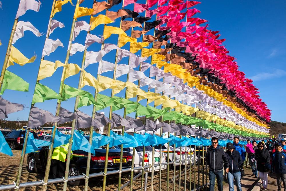 Flags mark the site of the festival, Saebyeol Oreum | © Jeju Tourism Organization