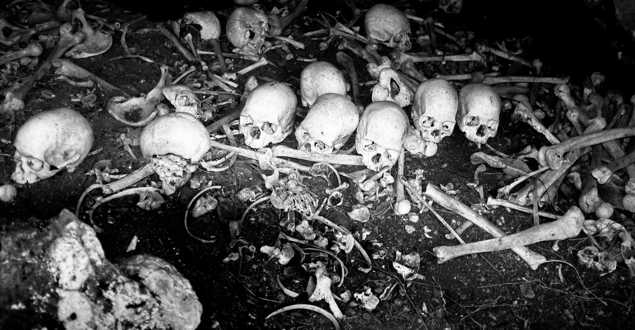 Cannibal Tours Fiji